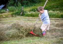 One of our guests helping with the hay making